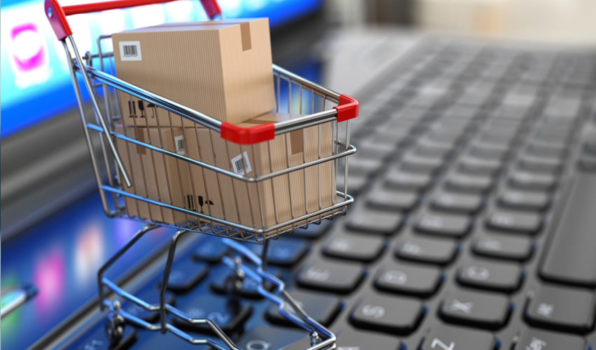 E-commerce: The New Reality